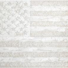 Joanna Rajkowska<br />American Flag<br />2016<br />150x80cm