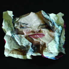 Anna Kutera<br />'POST-Face 02'<br />2010,<br />photography c-print<br />100x100cm
