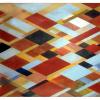 "Arlene Slavin <em>Fusuma</em>, 1974 Acrylic on canvas 150 x 180 cm (60"" x 72"")"