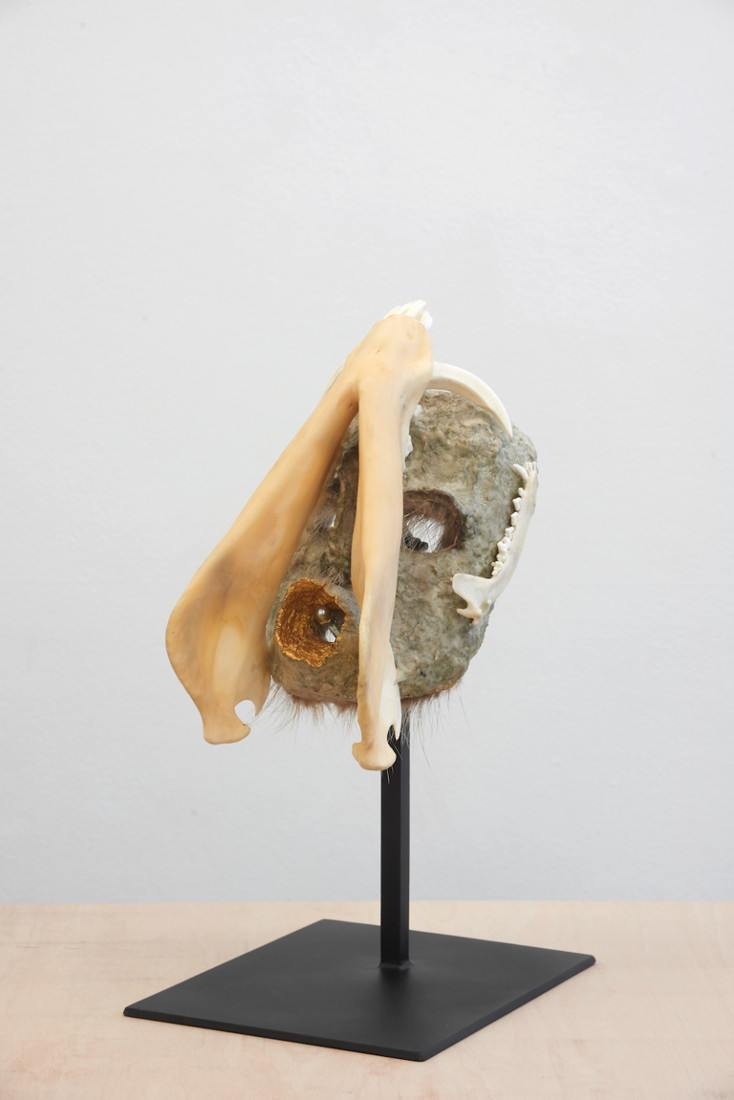 Joanna Rajkowska, Mask with Boar's Jaw, 2019, 29.5x16x15.5 cm (approx.) Photo by Andy Keate