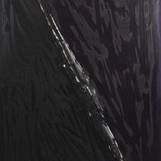 Bożenna Biskupska, Big Cage, 2006-2012, (BBLC05),  oil on canvas 185 x 120 cm