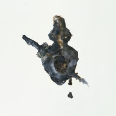 Filip Berendt<br />Pandemic X<br />2009<br />photography archival print on dibond,<br />80×80 cm, edition of 6+2AP