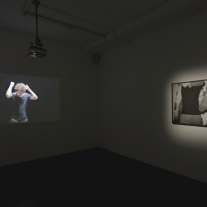 Grzegorz Stefański, choke, létrangère, 2017, installation view