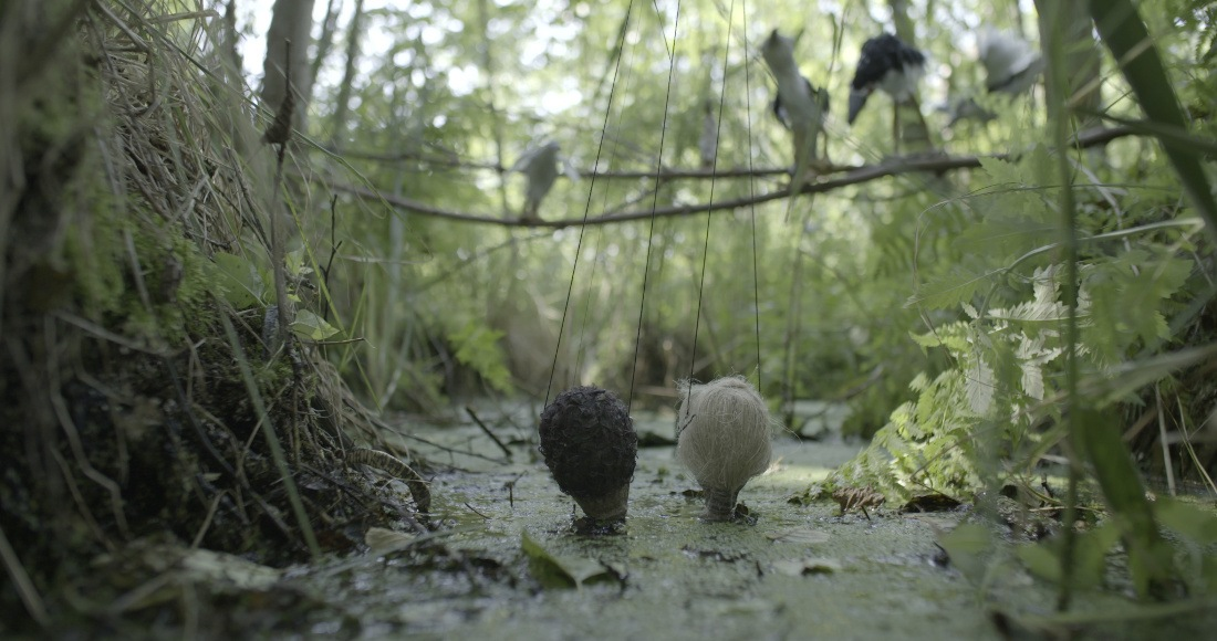 Still from Joanna Rajkowska and Robert Sniderman  Night Herons, video, 37', HD