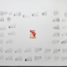 Katharine Marszewski, From Coast to Coat (wall piece), 2015, Screen print, Dimensions variable (installation size: 460 x 330 cm)