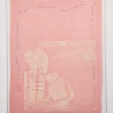 Katharine Marszewski, Screen in Dirty Desert Rosé, 2015, Screen print on fabric, glue, netting, aluminium, 121 x 160 cm