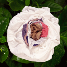 Małgorzata Markiewicz<br />Flowers<br />2006<br />C-print on dibond, plexi<br />90 x 90 cm, Edition of 6 plus + 1AP