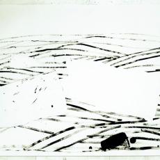 Marek Szczęsny, Untitled, 2010, Acrylic on paper, 75x105cm