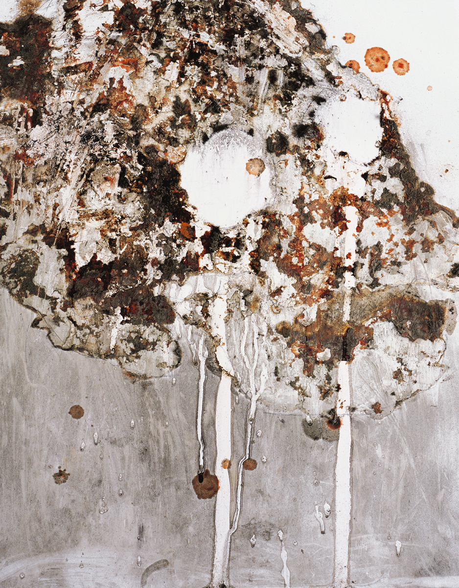 Filip Berendt, Pandemic IV , 2009, photography archival print on dibond ed.62AP, 40×50 cm
