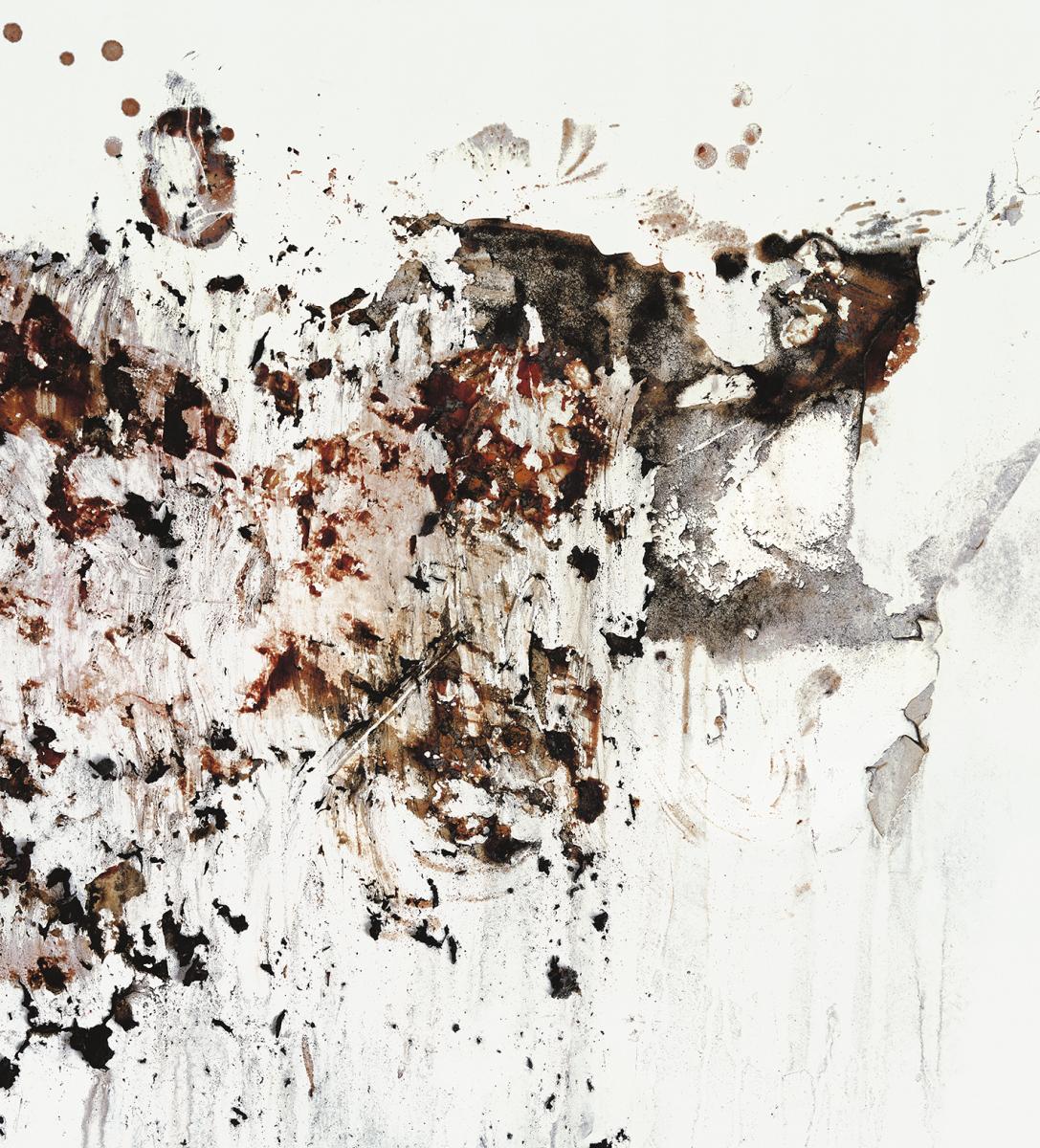 Filip Berendt, Pandemic VII, 2009, photography archival print on dibond ed.62AP, 60 x 50 cm