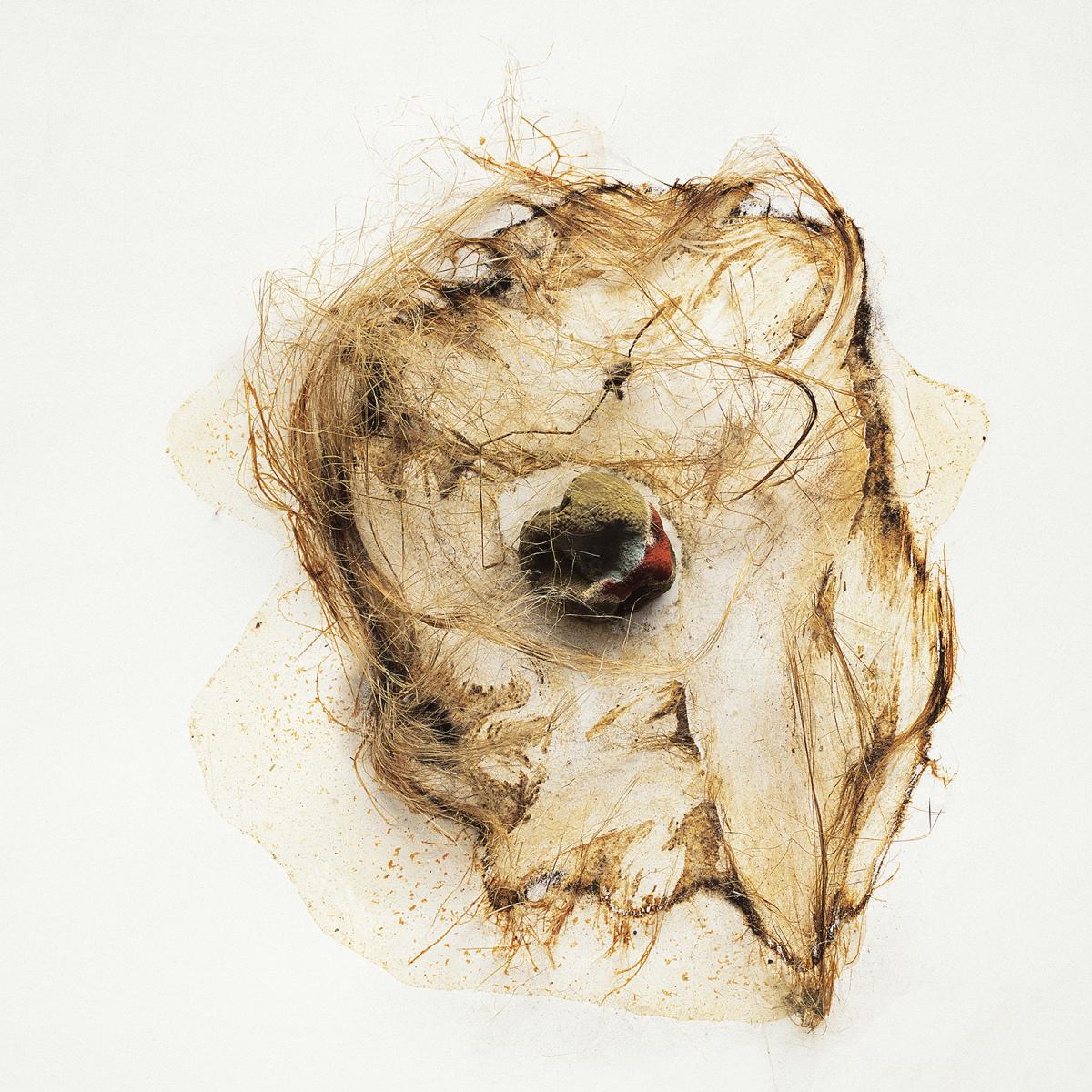 Filip Berendt, Pandemic V, 2009, photography archival print on dibond ed.62AP,50x 40 cm