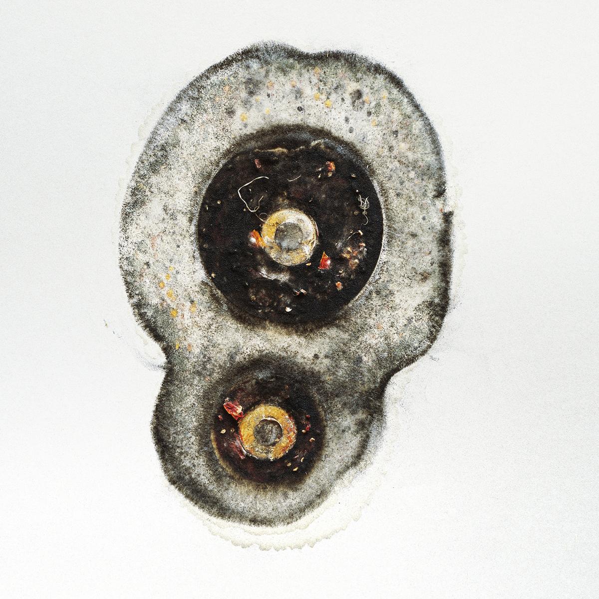 Filip Berendt, Pandemic II, 2009, photography archival print on dibond ed.62AP, 50×50 cm