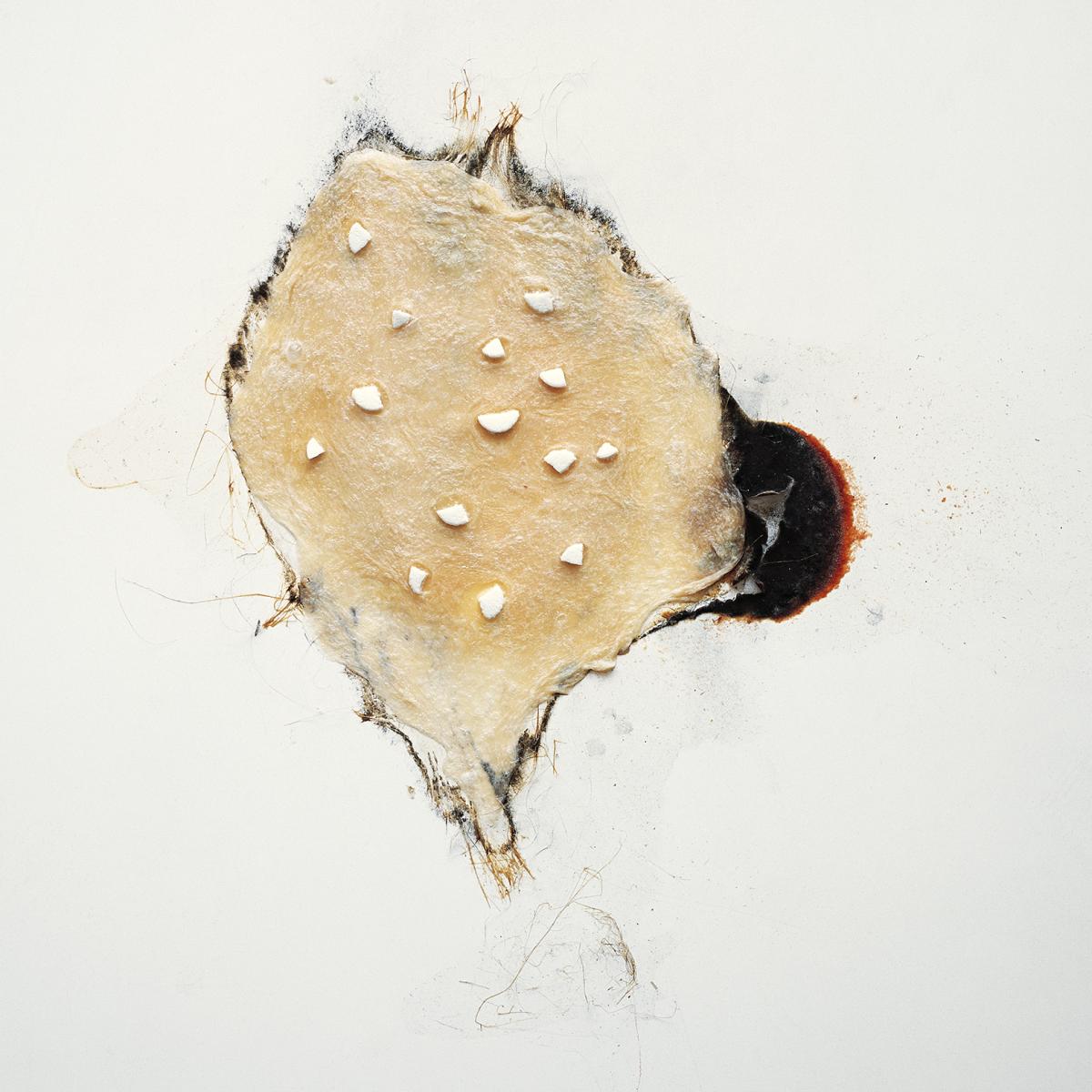 Filip Berendt, Pandemic III, 2009, photography archival print on dibond ed.62AP, 50×50 cm