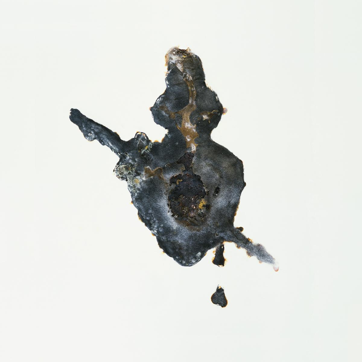 Filip Berendt, Pandemic  X, 2009, photography archival print on dibond ed.62AP, 80×80 cm