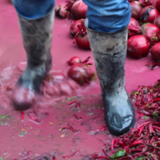 Alicja Rogalska<br />Reap, Glean, Garner, 2014<br />video, a still from the video