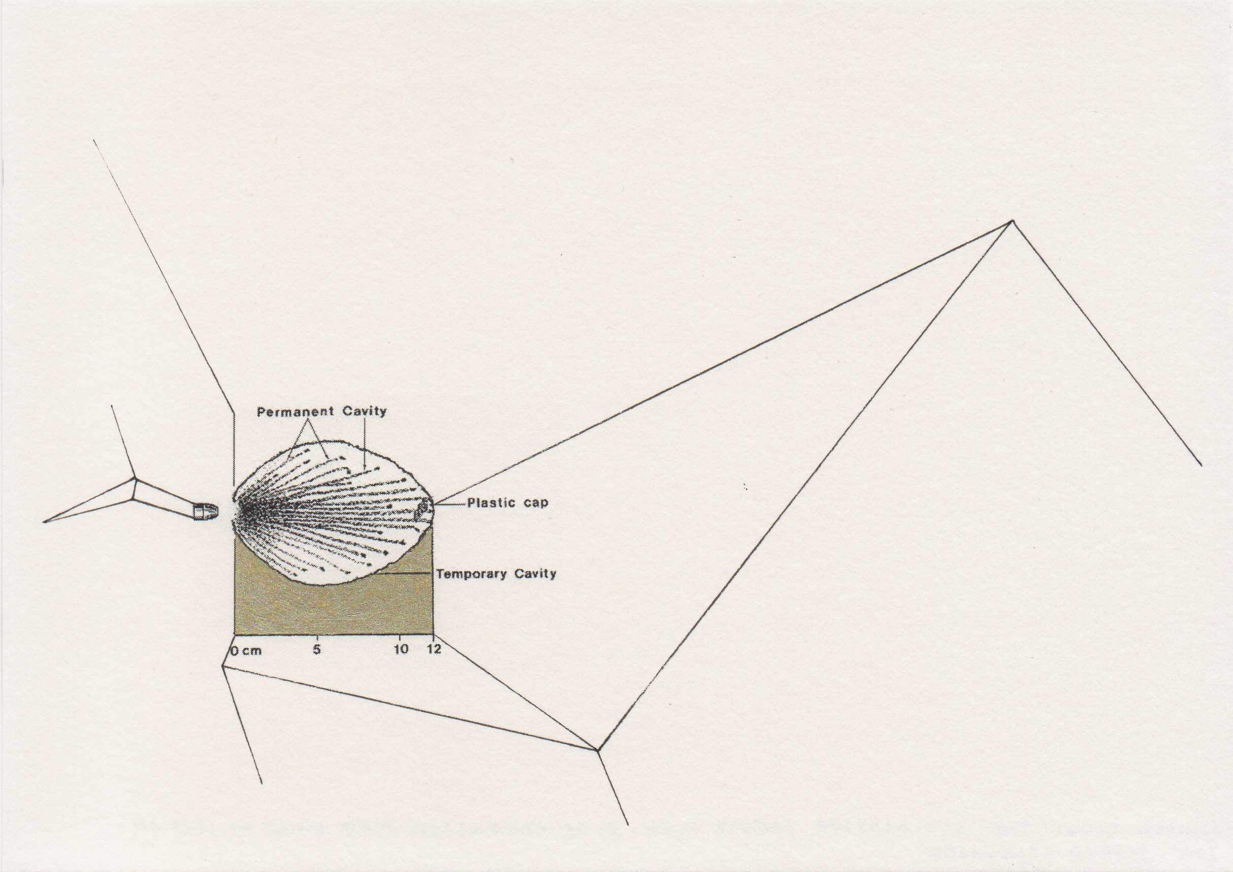Joanna Rajkowska .357 Glasser Safety Slug, 80gr Prefragmented Bullet at 1785 f:s 2015 20.6x14.6 cm.jpg