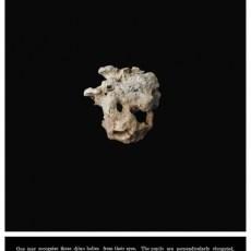 Joanna Rajkowska<br />Stones and Other Demons V (JRSD05)<br />2019<br />Giclée on Hahnemühle German Etching <br />85 x 70 cm (88 x 73 cm framed) Edition 1 of 5 + 2AP