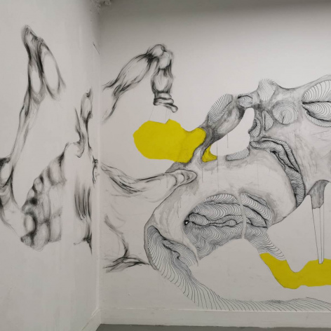 Tatiana Wolska Wall Drawings