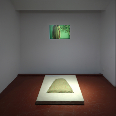 Małgorzata Markiewicz<br />'Trasformations'<br />2007<br />installation view  at Bunkier Art Gallery, Cracow