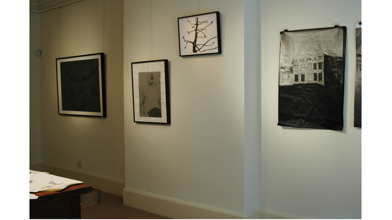 Installation view, Wolf Man, Freud Museum, London, 2012